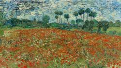 """""""Van Gogh. Tra grano e cielo"""