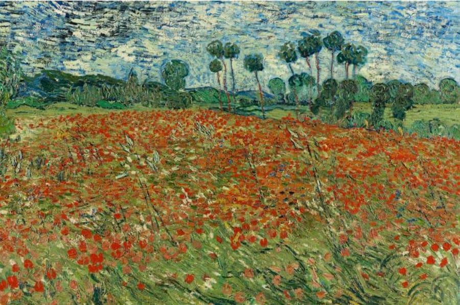 Vincent van Gogh, Campo di papaveri, 1890 olio su tela, cm 73 x 91,5 L'Aia, Gemeentemuseum prestito del Cultural Heritage Agency of the Netherlands