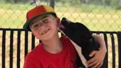 Con solo 7 años, este niño ha salvado a más de mil perros de la
