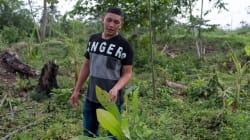 Cada semana asesinan a 4 ecologistas solo por nuestros