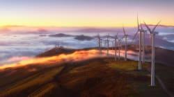 Sostenibilidad, más allá del presente: una visión de