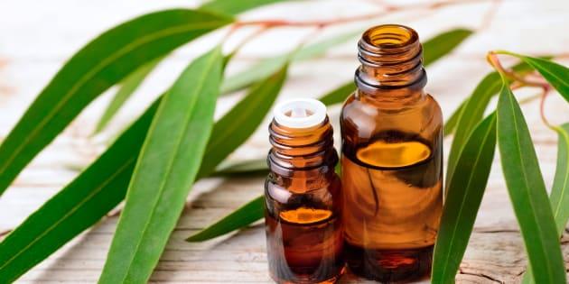 Ces huiles essentielles vous aideront à digérer les gros repas de fêtes