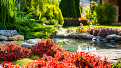 The Hottest Landscaping Trends for