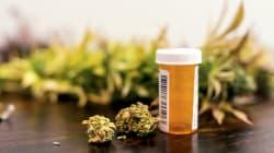 Negli Usa un malato di cancro su 4 usa marijuana.