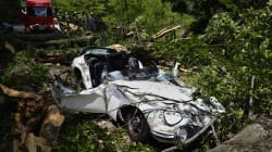 荒れる山林、道路沿道の自然木が倒れてきたら、責任は誰に? -トヨタ2000GT大破事故から学ぶべき教訓-