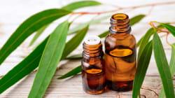 Ces huiles essentielles vous aideront à digérer les gros repas de