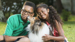 Pets -- Understanding Your Child's Affinity Towards