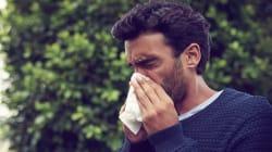7 remèdes naturels et conseils contre les allergies soumis à des
