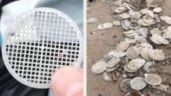 Risolto il mistero dei dischetti di plastica sulla