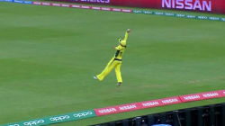 Aussie Cricketer Pulls Off One Of The Greatest Boundary-Line Saves