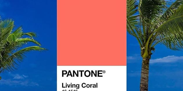 Il Living Coral è il colore dell'anno: lo dice Pantone