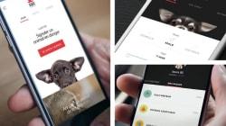 30 Millions d'Amis permet de signaler les animaux maltraités depuis son