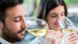 BLOGUE 10 vins de transition pour réussir votre révolution de