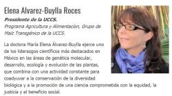 Ella es María Elena Álvarez-Buylla Roce, a quien AMLO quiere para el Conacyt