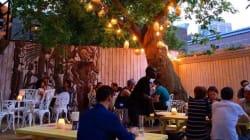 18 terrasses où boire de délicieux cocktails à
