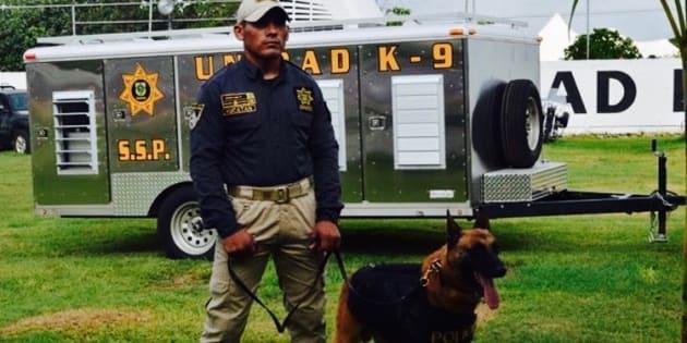 Estados Unidos dona a México 25 perros para detectar droga