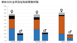 温暖化の影響?グレートバリアリーフのアオウミガメ調査個体の9割がメス