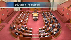 Senate Squashes Hanson/Bernardi Motion Trashing The Refugee