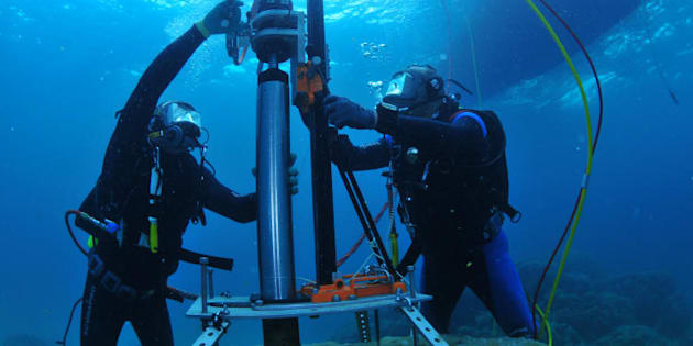 Scientists from AIMS (Australian Institute of Marine Science) taking core samples from brain corals on the Great Barrier Reef.