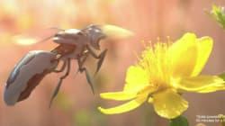 Walmart réfléchit à des abeilles robots comme dans