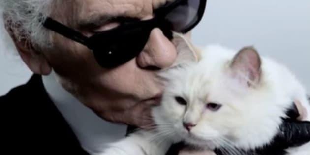 Karl Lagerfeld designò come ereditiera la sua gatta Choupett