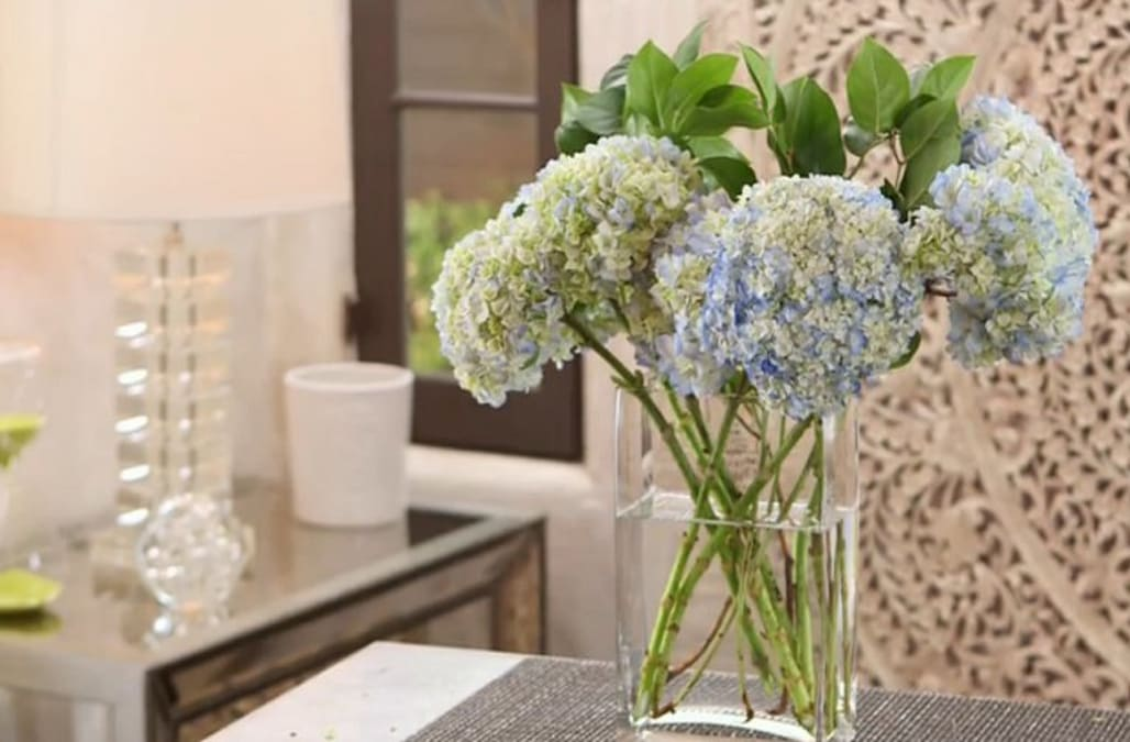 7 Ways To Make Your Hydrangeas Last Longer Aol Lifestyle