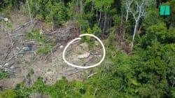 Une tribu amazonienne isolée et non-répertoriée, repérée par un