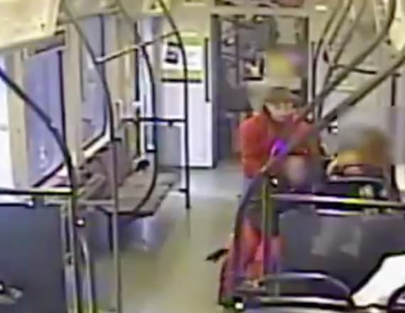 Man chased after trying to steal woman's wheelchair