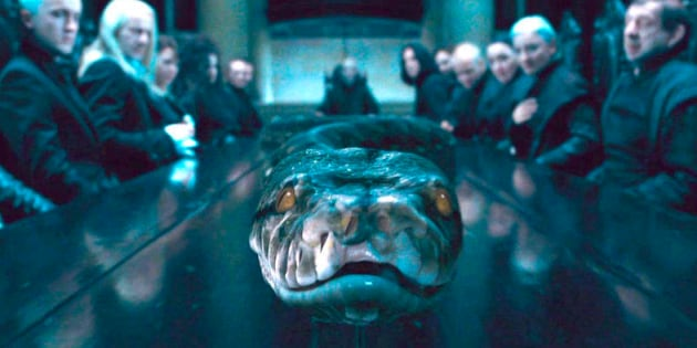 Le serpent de Voldemort était une sorcière (et on l'ignorait)