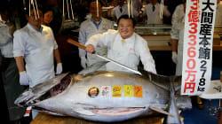 Un thon rouge vendu au prix record de 4,1 M$ au