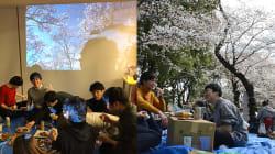 「エア花見」「インドア花見」が増殖中? 桜の名所・上野公園にもちょっとした変化