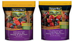 Health Canada Recalls Frozen Berries That May Be