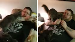 Este é Negan, o gato que é viciado em roubar a comida de seu
