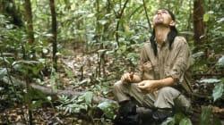 Contro le piantagioni selvagge arriva l'High Carbon Stock che misura il respiro della