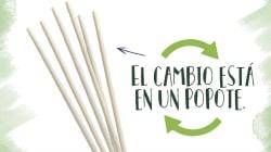 Empresa mexicana crea popotes biodegradables con semilla de