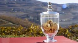 Castagne, tartufi e nocciole: i sapori dell'autunno a