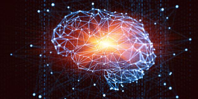 No cérebro, ao menos 200 vieses cognitivos influenciam nosso comportamento.