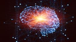 Seu cérebro não é tão racional quanto parece. Entenda a influência do viés