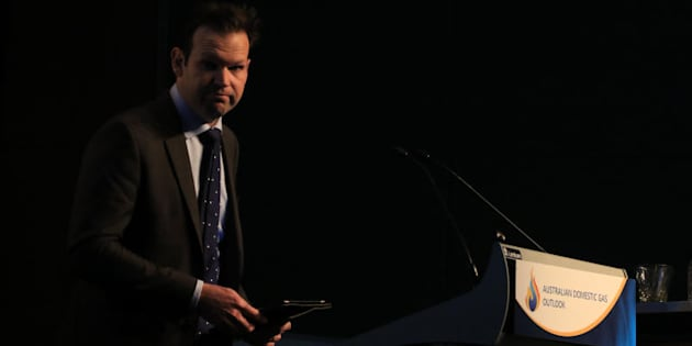 Resources Minister Matt Canavan has stepped down from Cabinet over dual citizenship issues.