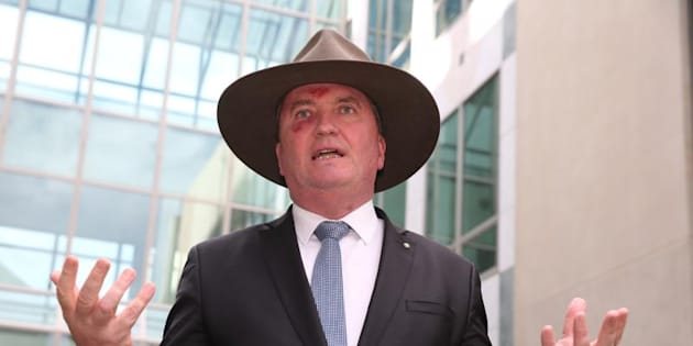 "Deputy Prime Minister Barnaby Joyce says ""no one"" has really been insulted by the plebiscite"