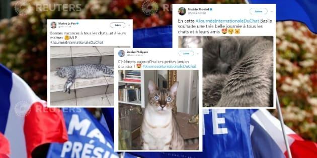 Journée internationale du chat: les cadre du FN tenaient à faire savoir qu'ils aiment les chats