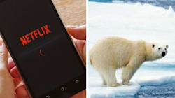 Greenpeace Says Netflix Binge-Watching May Not Be Good For The
