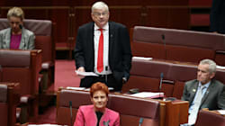 One Nation Has A Clear Conflict Of Interest In Calling For ABC Budget