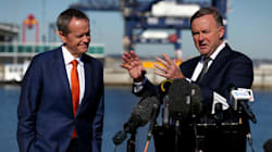 Anthony Albanese Just Tipped An Enormous Bucket On Bill