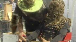 Il se recouvre de 100.000 abeilles pour la promo d'un