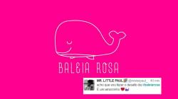 A 'Baleia Rosa' quer incentivar atos de amor e cuidado para além das rede