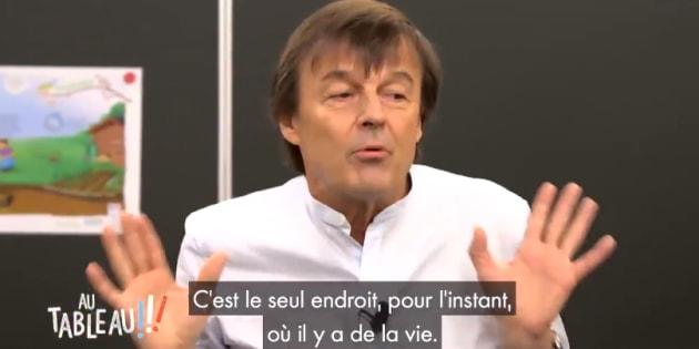 """Dans """"Au Tableau !!!"""", Nicolas Hulot explique tout ce que les baleines lui ont appris"""