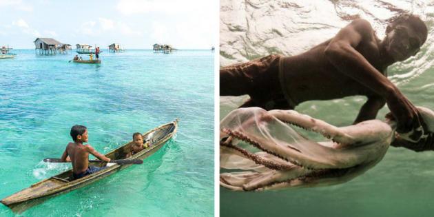 The Bajau Laut people, marine nomads, survive fishing.