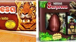 O chocolate Surpresa voltou e está deixando todo mundo com gostinho de