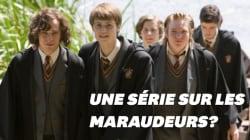 Daniel Radcliffe voudrait une série